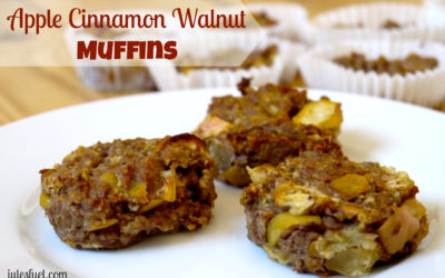 Apple Cinnamon Walnut Muffins (Allergy-Friendly)